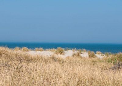 Friesland_11