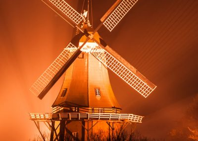 Friesland_46